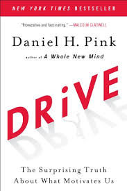 Drive: The Surprising Truth About What Motivates U