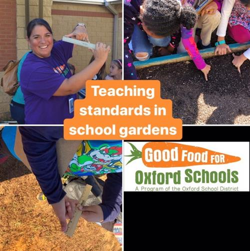Teaching standards in school gardens